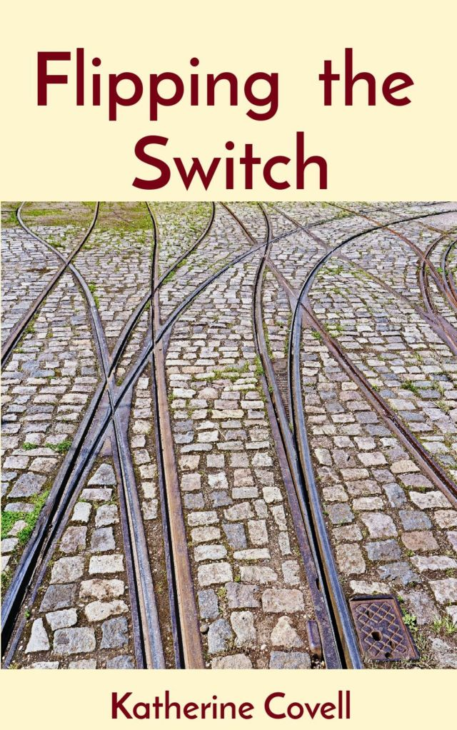 Cover image for Flipping the Switch - Title and Author name, and picture of diverging trolley tracks in cobblestone street.